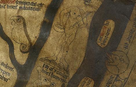Blemmyes Hereford Mappa Mundi