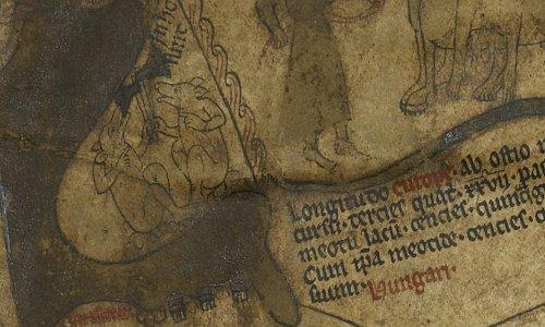 Cynocephali Hereford Mappa Mundi